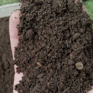 premium screened compost